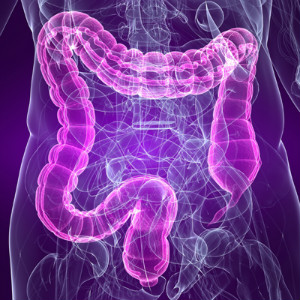 What is a Microbiome & How Does it Affect your Health? by Dr. Zyrowski