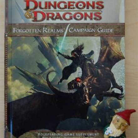 4th Edition Forgotten Realms Campaign Guide Review: Big Changes, Good Book, Crappy Map