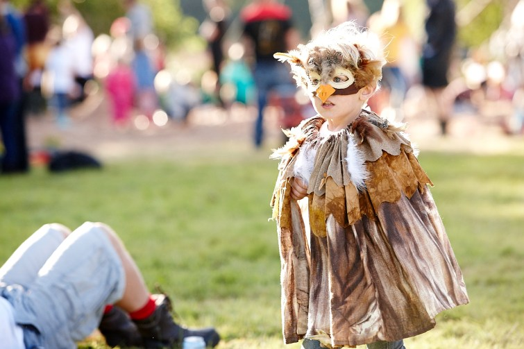 A little boy dressed as an owl at Just So Festival 2016
