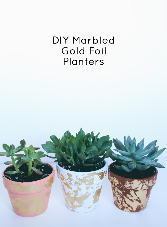 DIY Marbled Gold Foil Planters By Gold Standard Workshop