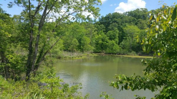 Avalon Way - 13 Lake front lots and 33 acres Gravois Mills, Mo.