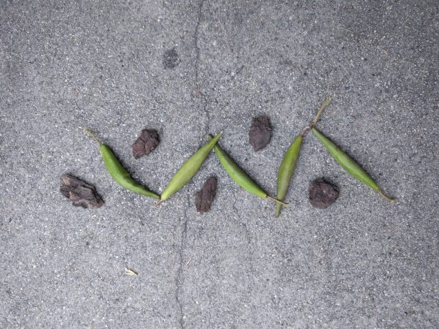 Image of Outdoor Math nature inspired design by L Ravitch