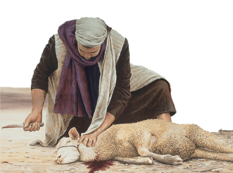 Where in the Scriptures does it say that God told Cain and Abel to bring a blood sacrifice?