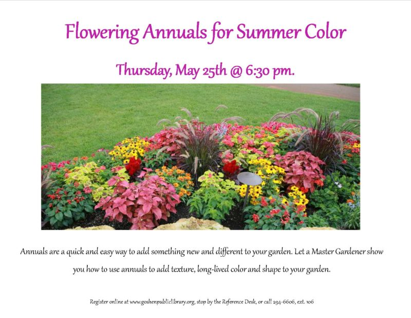 Flowering Annuals for Summer Color