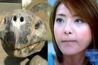 西川史子の亀顔