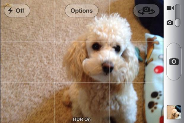 Grid option iPhone
