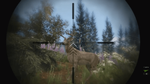 Go hunting in GTA 5.