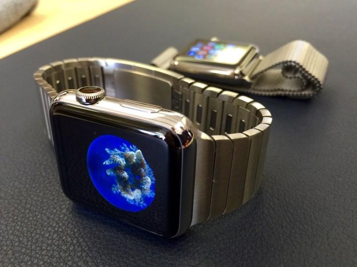 Apple watch shipments