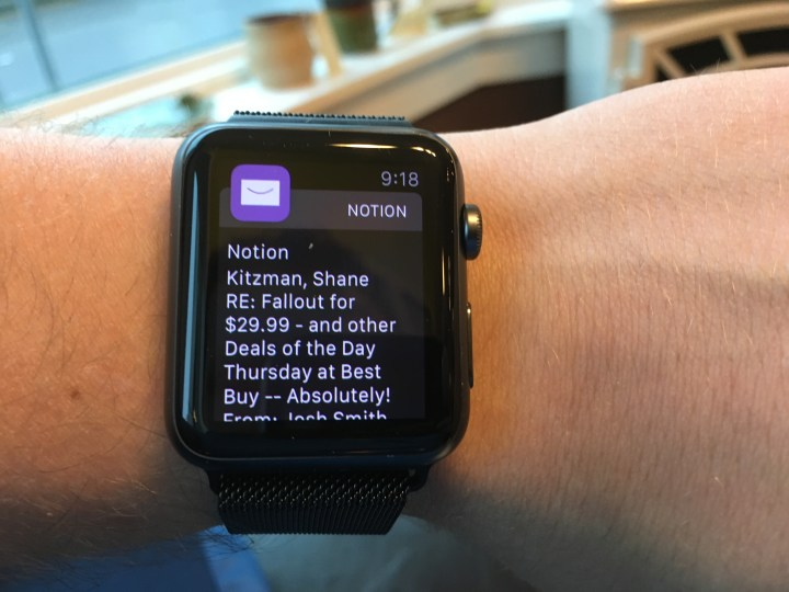 Smart notifications only interrupt for really important messages on iPhone and Apple Watch.