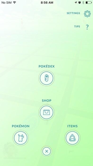 Pokemon GO Account Name Change (10)