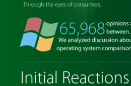 Mashwork_Windows_8_Infographic_thumb