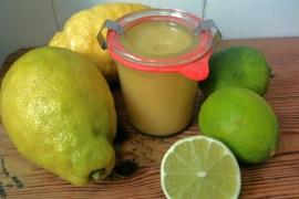 Lemon Curd | GourmetGuerilla.de
