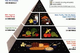 Food Guide Pyramide