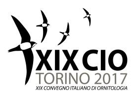 XIXCIO logo