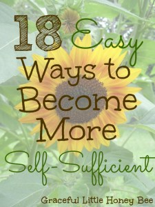 Check out these 18 Easy Ways to become more Self-Sufficient that almost anyone can do!