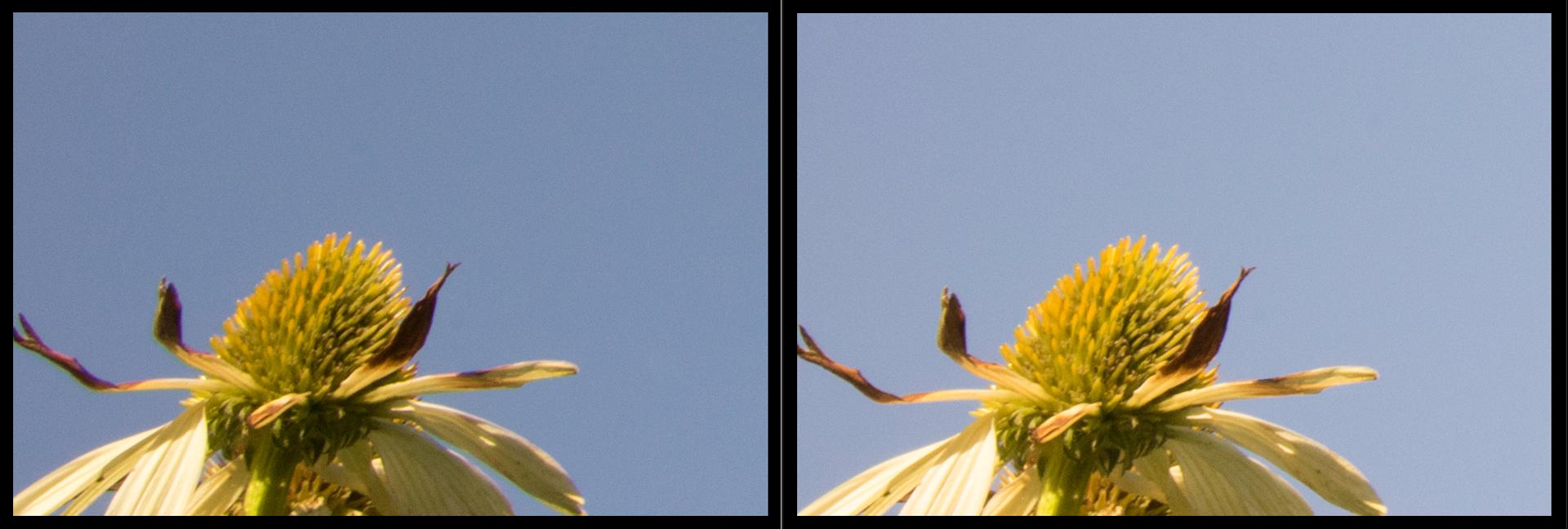 Canon 17-40mm F4 vs Canon 16-35mm F4 at 24mm F22 Corner Sharpness