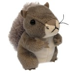 Squirrel---Grey