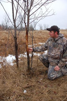 Fall Deer Scouting