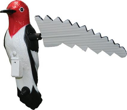 mojo woodpecker