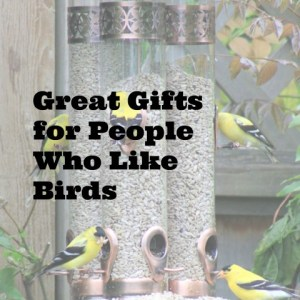 gifts for people who like birds