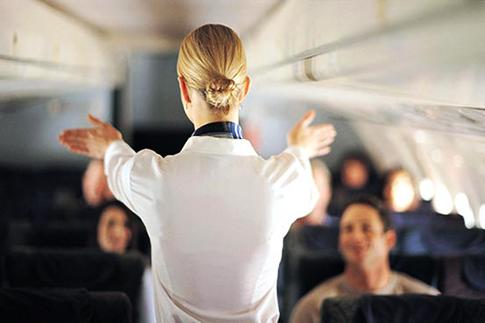 Flight Attendant 02