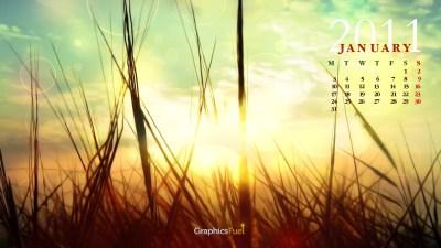Wallpaper calendar: January 2011 - GraphicsFuel