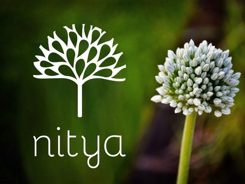 Nyon création logo Nitya