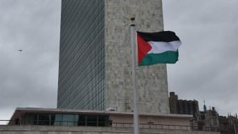 Palestinian-Flag-UN