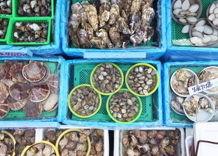 Shellfish, clams, oysters at the Hakodate Morning Market