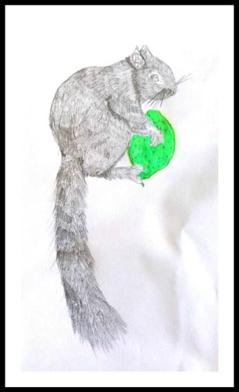 ecureuil et vert citron