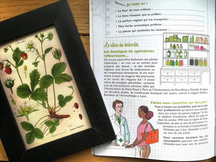 GC - mon cahier green power - solar - adeline gadenne (4)