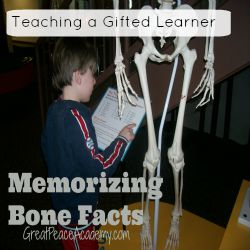 Bone Facts teaching a gifted learner thumbnail