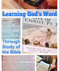 Growing Up in God's Word Bible Study Review