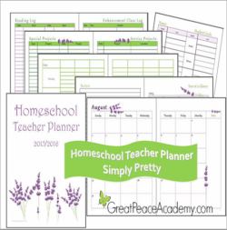 3 Reasons Why You Need The Homeschool Teacher Planner