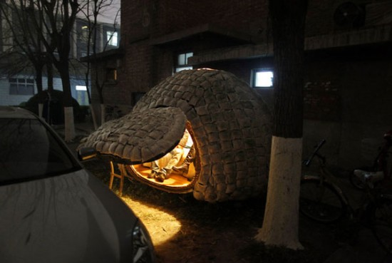 daihai fei s egg house 1