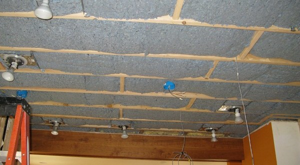 5 eco friendly insulation trends for your home green for Eco friendly house insulation