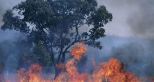 worst-wildfires-1