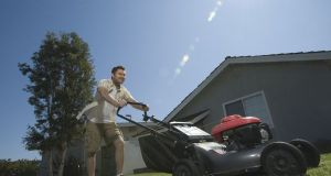 keep-your-lawn-healthy-3