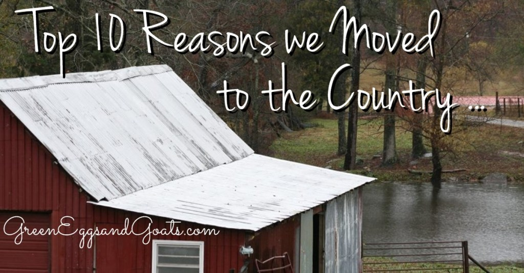 Top 10 Reasons We Moved to the Country