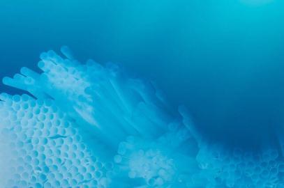 Plastic Pacific by Kim Preston - straws
