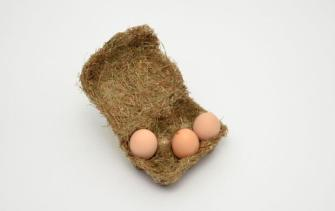 Happy Eggs sustainable packaging