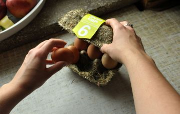 Happy Eggs sustainable egg carton