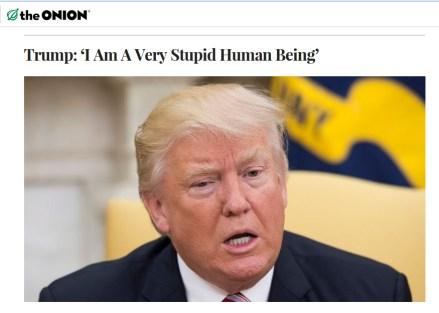 Trump imstupid
