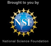 brought_nsf