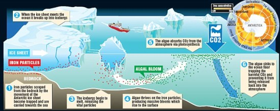 iron algae co2 sink Leeds University: Melting Icebergs Could Stop Global Warming
