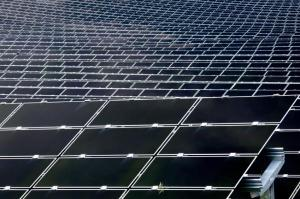 solar panel array insects 300x199 Solar Panels Glare Could Create Negative Chain Effects for Surrounding Ecosystems, Researchers Say