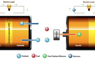 Two Types of Hydrogen Fuel Cell Compared