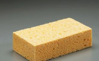 Sponge (c) Tasco Enterprises