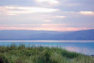 Israel's Ministry of Environmental Protection to Clean Up the Kinneret