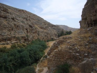 Reflections On A Day Hiking Through Jordan Valley's Wadi Qelt